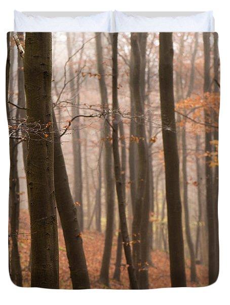 Late Autumn Beech Duvet Cover by Anne Gilbert