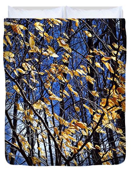 Late Fall Duvet Cover by Elena Elisseeva