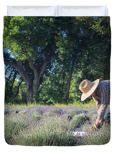 Lavender Harvest Duvet Cover by Mary Lee Dereske