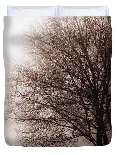 Leafless Tree In Fog Duvet Cover by Elena Elisseeva