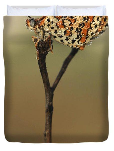 Lesser Spotted Fritillary Duvet Cover by Alon Meir