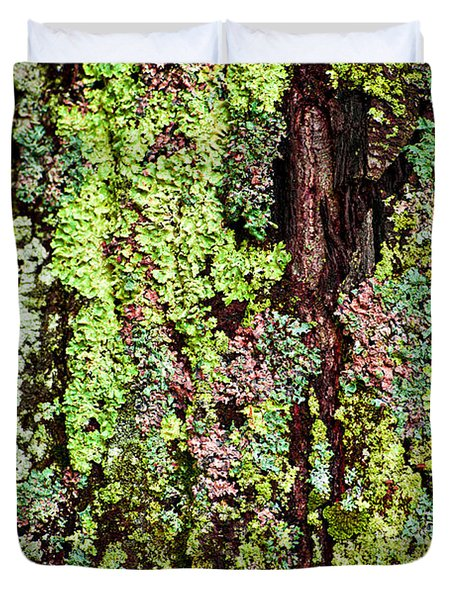Lichen Duvet Cover by Elena Elisseeva