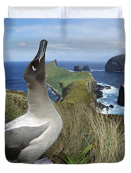 Light-mantled Albatross Sky-pointing Duvet Cover by Tui De Roy