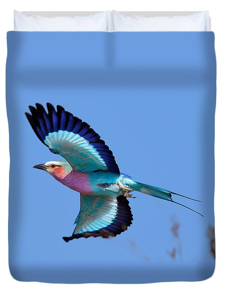Lilac-breasted Roller In Flight Duvet Cover by Johan Swanepoel