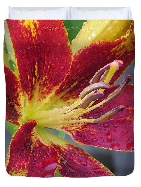 Lily In My Patio Duvet Cover by Sonali Gangane