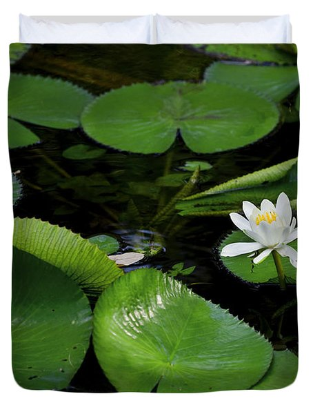Lily Pads And Blossoms Duvet Cover by Rich Franco