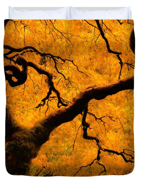 Limned In Light Duvet Cover by Don Schwartz