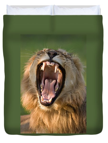 Lion Duvet Cover by Johan Swanepoel