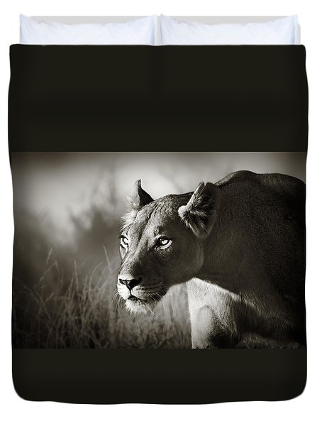 Lioness Stalking Duvet Cover by Johan Swanepoel