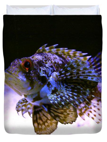 Lionfish Dendriochrius Barberi Duvet Cover by Karon Melillo DeVega