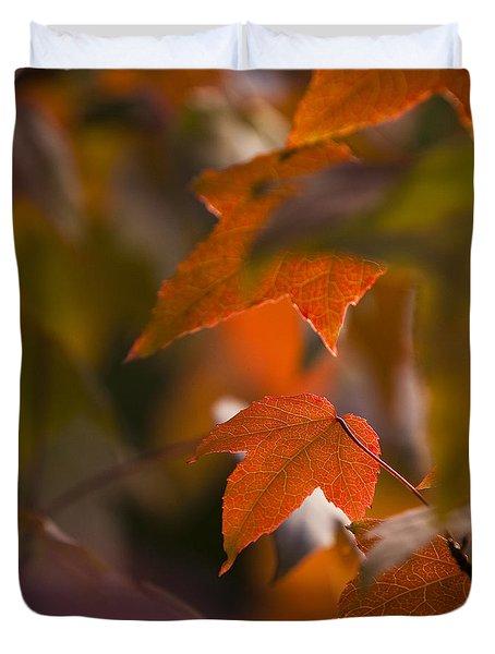 Liquidambar Autumn Duvet Cover by Anne Gilbert