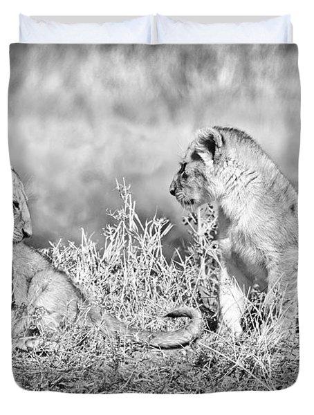 Little Lion Cub Brothers Duvet Cover by Adam Romanowicz