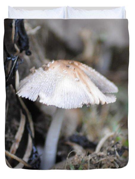 Little Mushroom Duvet Cover by Bill Cannon