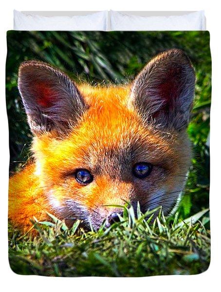 Little Red Fox Duvet Cover by Bob Orsillo