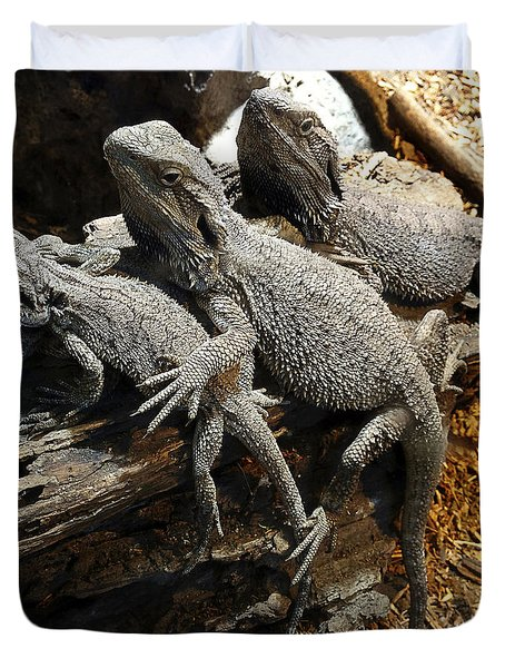 Lizards Duvet Cover by Les Cunliffe