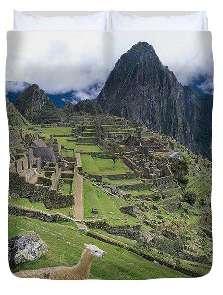 Llama At Machu Picchus Ancient Ruins Duvet Cover by Chris Caldicott