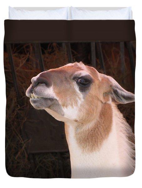 Llama Duvet Cover by Ellen Henneke