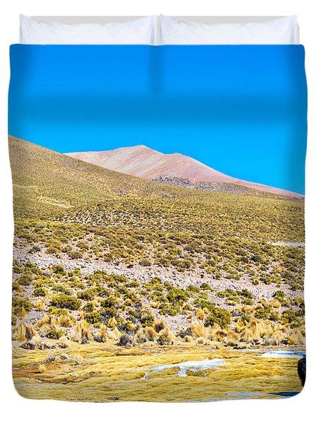 Llama Landscape Duvet Cover by Jess Kraft