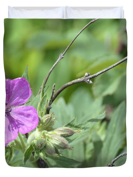 Lone Geranium In Yellowstone Duvet Cover by Bruce Gourley