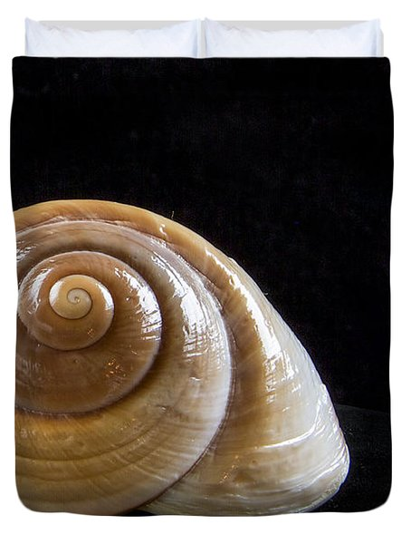 Lone Shell Duvet Cover by Jean Noren