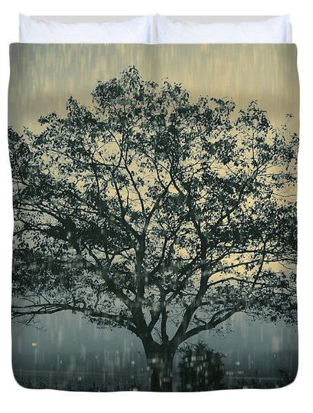 Lone Tree and Stormy Evening Duvet Cover by David Gordon