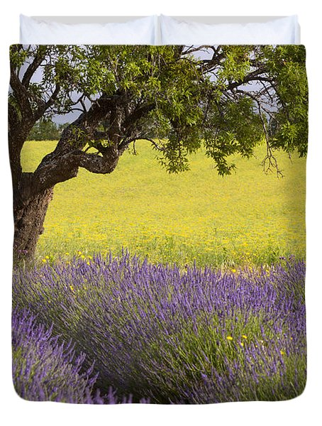 Lone Tree In Provence Duvet Cover by Brian Jannsen