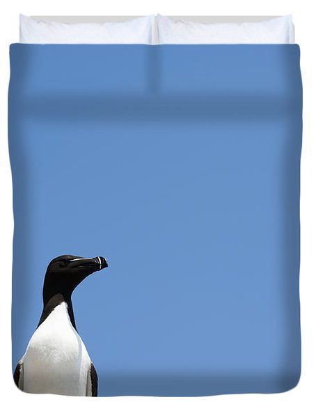 Look At Me Duvet Cover by Anne Gilbert