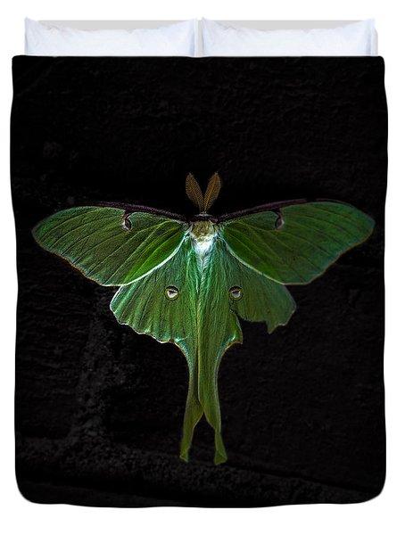 Lunar Moth Duvet Cover by Bob Orsillo
