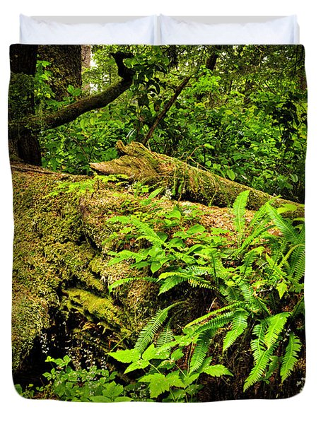Lush temperate rainforest Duvet Cover by Elena Elisseeva