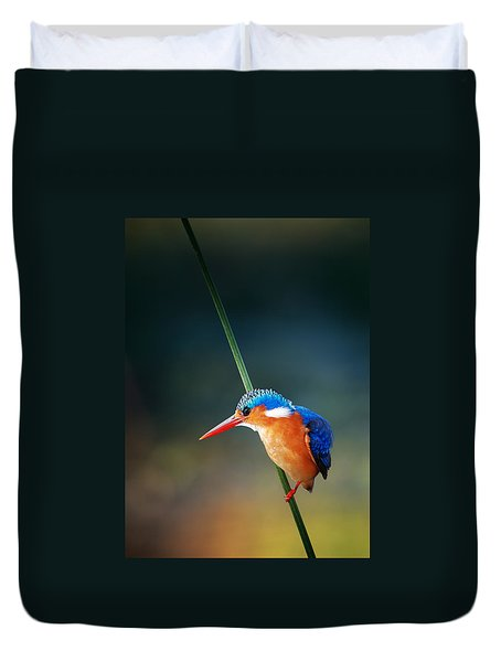 Malachite Kingfisher Duvet Cover by Johan Swanepoel