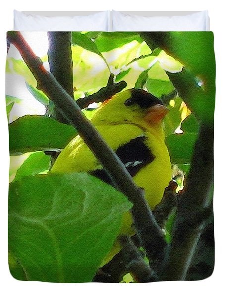 Male American Goldfinch Duvet Cover by J McCombie
