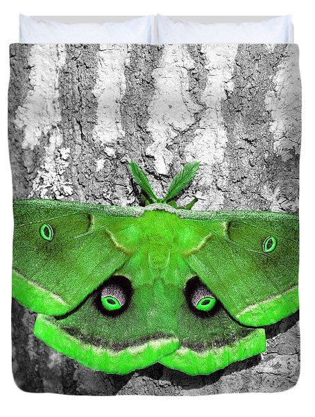Male Moth Green Duvet Cover by Al Powell Photography USA