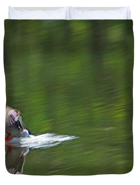 Mallard Splash Down Duvet Cover by Karol Livote