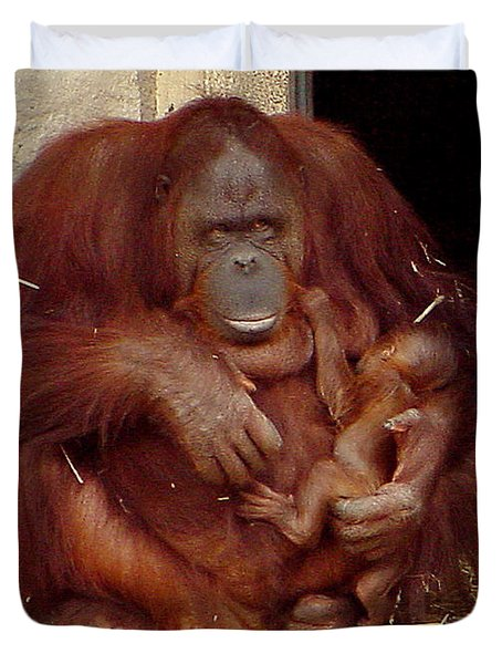 Mama N Baby Orangutan - 54 Duvet Cover by Gary Gingrich Galleries