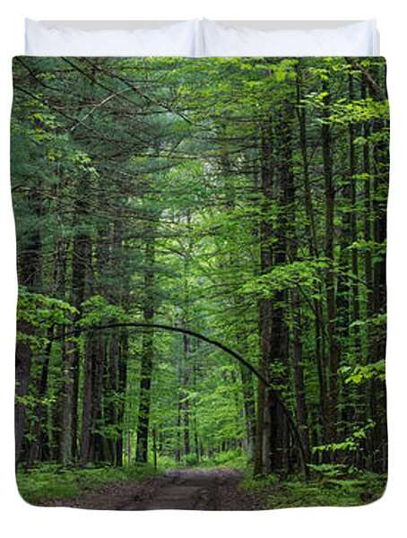 Manistee National Forest Michigan Duvet Cover by Steve Gadomski