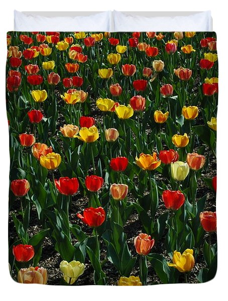 Many Tulips Duvet Cover by Raymond Salani III