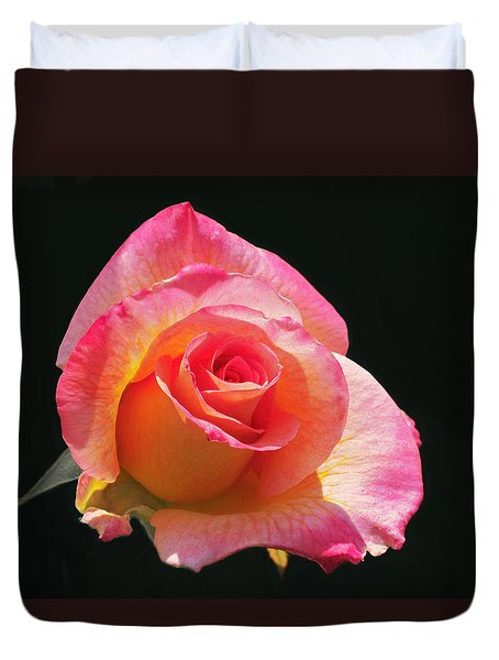 Mardi Gras Floribunda Rose Duvet Cover by Rona Black