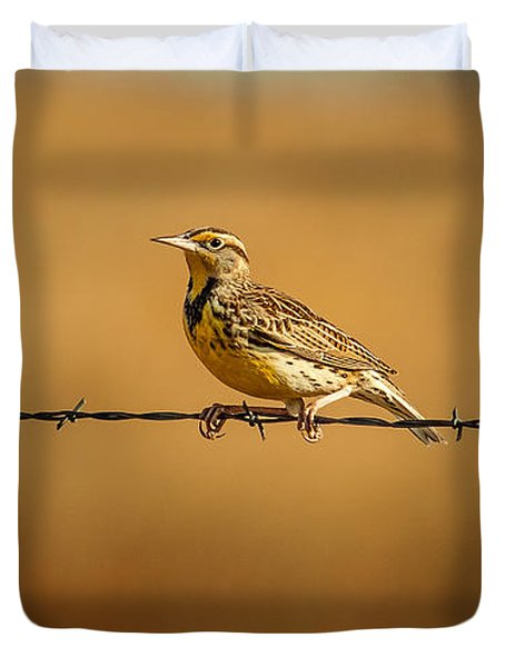 Meadowlark And Barbed Wire Duvet Cover by Robert Frederick