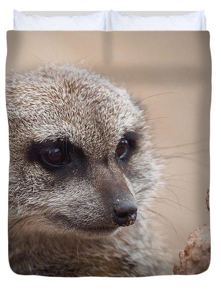 Meerkat 7 Duvet Cover by Ernie Echols