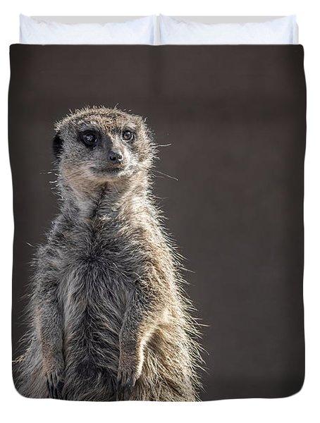 Meerkat Sentinel Duvet Cover by Ernie Echols