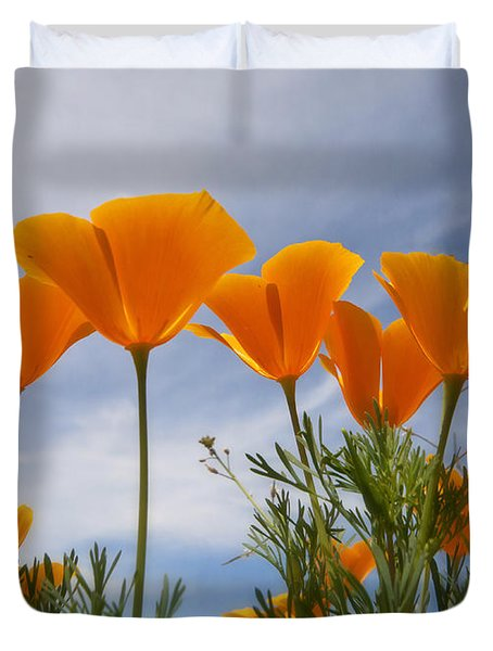 Mexican Poppies  Duvet Cover by Saija  Lehtonen