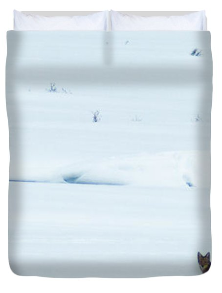 Michigan Coyotee  Duvet Cover by Optical Playground By MP Ray