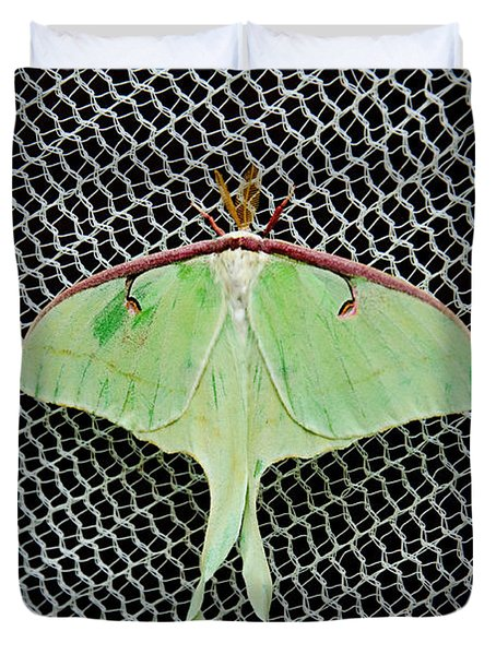 Mint Green Luna Moth Duvet Cover by Andee Design