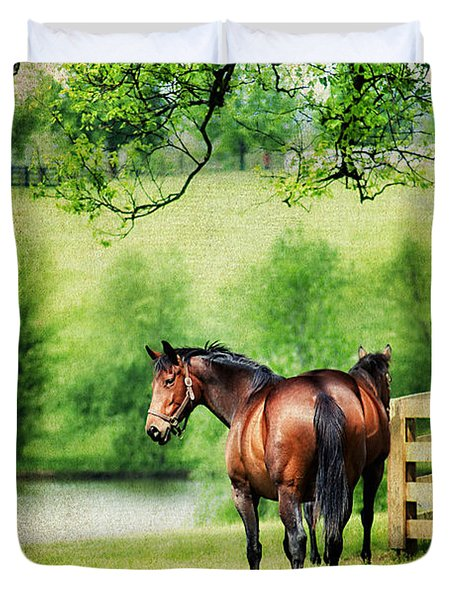 Mom and Foal Duvet Cover by Darren Fisher