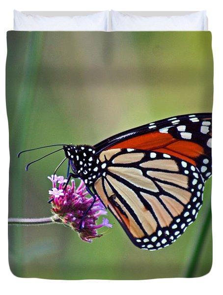 Monarch Butterfly In Garden Duvet Cover by Karen Adams
