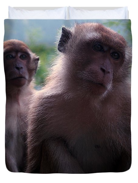 Monkey's Attention Duvet Cover by Justin Woodhouse