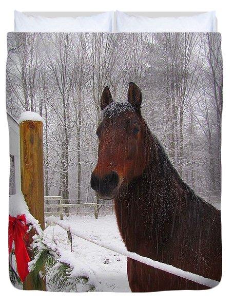 Morgan Horse Christmas Duvet Cover by Elizabeth Dow