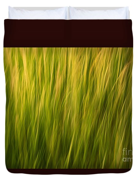 Morning Glory Duvet Cover by Sandi Mikuse