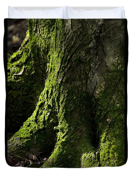 Moss Covered Tree Trunk Duvet Cover by Christina Rollo
