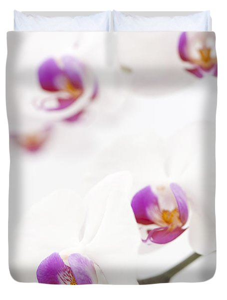 Moth Orchid Duvet Cover by Anne Gilbert